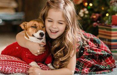Vianočné darčeky pre domácich miláčikov